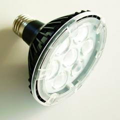 PAR30 LED bodový reflektor
