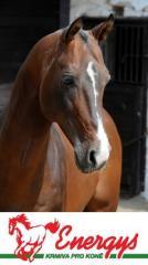 Krmivo pro koně Směsi Energys