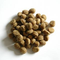 Fodder dry for dogs of small breeds