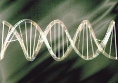 Gene Proof PathogenFree DNA Isolation Kit