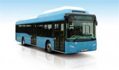 Příměstské autobusy Tedom L12 G