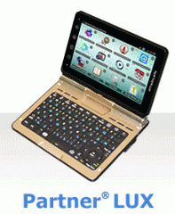 Electronic dictionaries