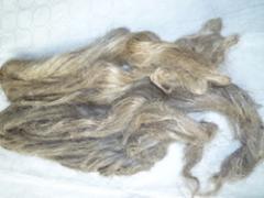 Linen fibres