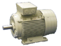 Elektromotory  1LG4