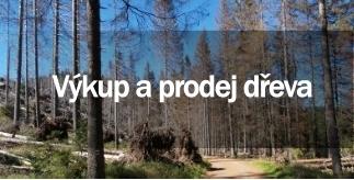 Objednávka Výkup a prodej dřeva